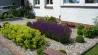 0001s_0024_kiesgarten-mit-sonnenstauden-2