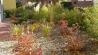 0001s_0025_kiesgarten-mit-quellstein