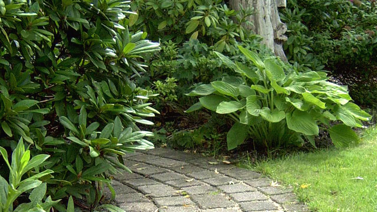 privatgarten-schleswig