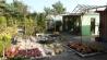 0000s_0012_kiesgarten-mit-quellstein